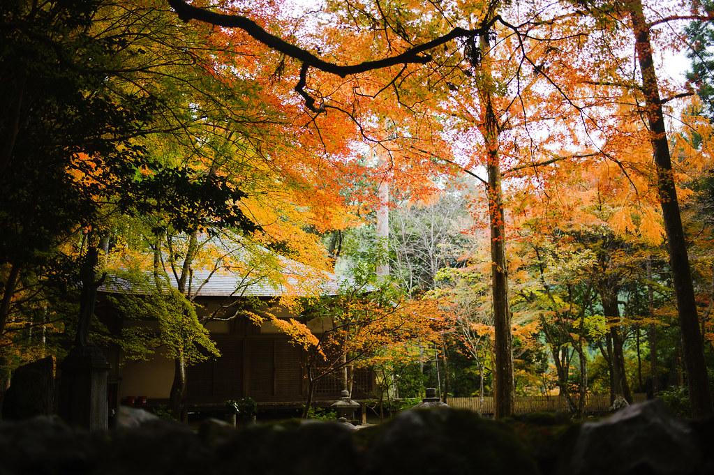 Kyoto Takao