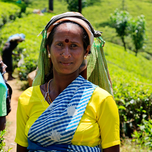 Tea worker by photographer Hans Wessberg