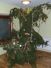 Sarviline puu