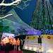 Árvore de Natal - Gazeta EDP PMV - Premuium