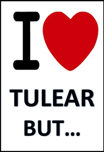 I LOVE TULEAR BUT