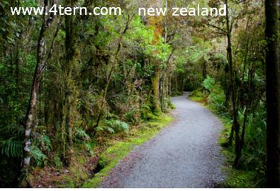 纽西兰打工度假-度假为主要目的