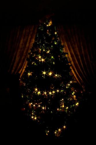 Christmas Interiors, 2011
