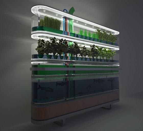 Home Framing Unit, photo via Design Probes