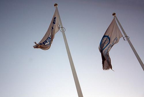 Flaggor (315 av 365)