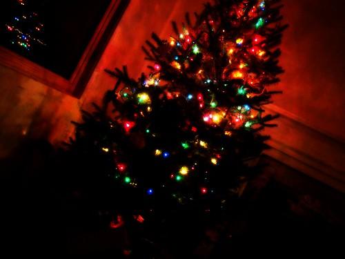 O, Christmas Tree