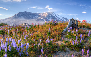 Mount_St_Helens_Aug2011_12