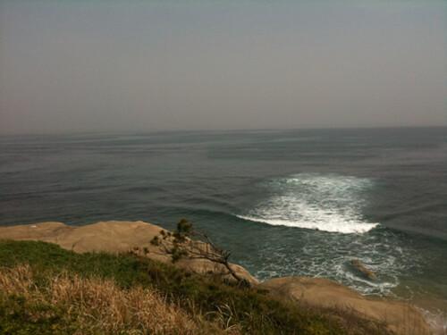 展望台から海が見える