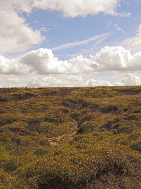 Looking Across Kinder Scout Plateau (SK 088880), Derbyshire [HDR Composite Image]