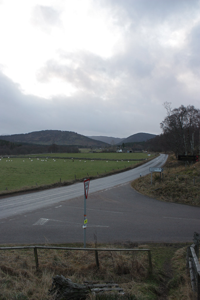 The North Deeside Road