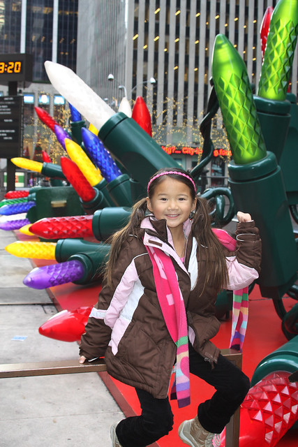 New York 2011 387