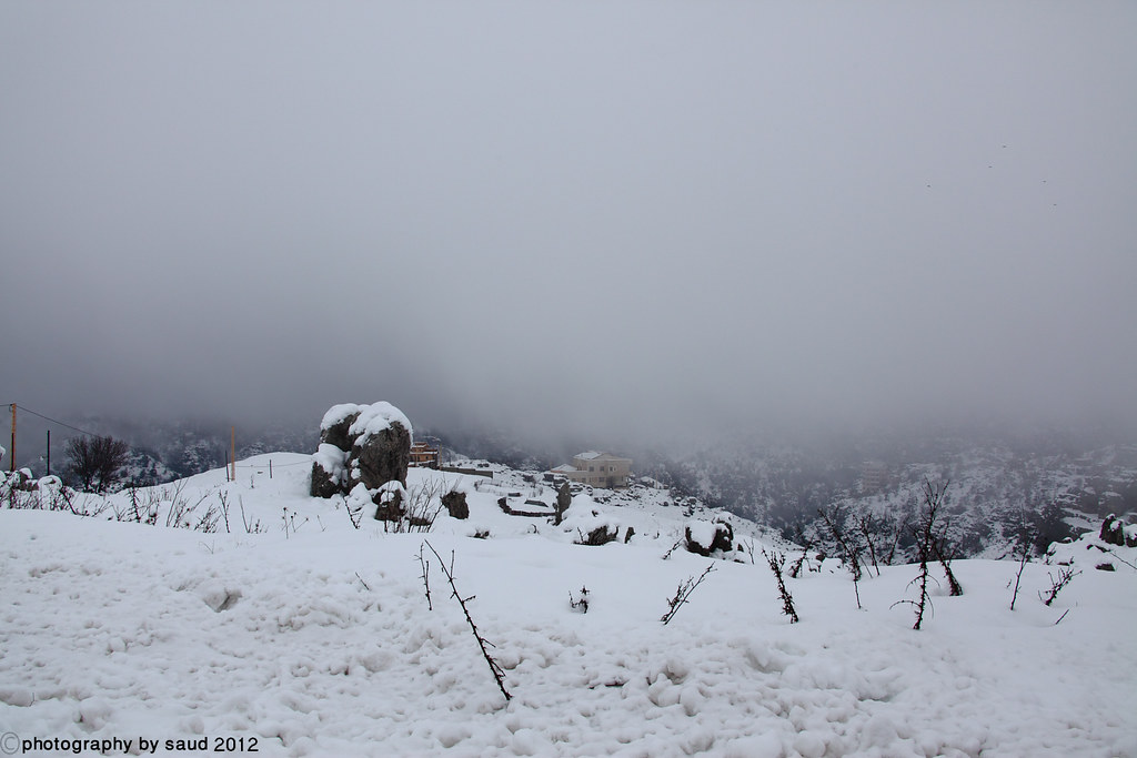 بيروت الشتاء مايحمله وثلوج وأمطار وضباب 6697196107_8126942bc