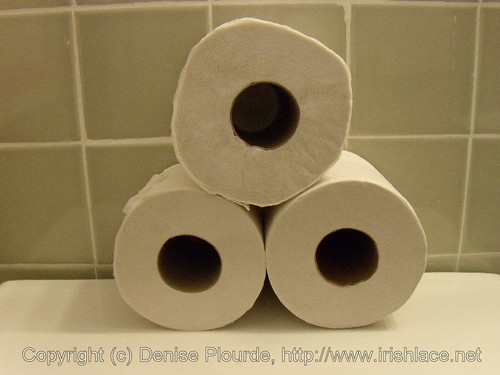 Dimensions of a Roll of Toilet Paper