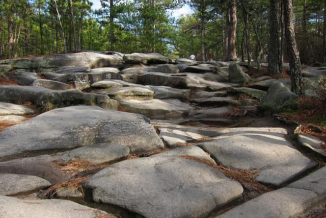 Stone Mountain