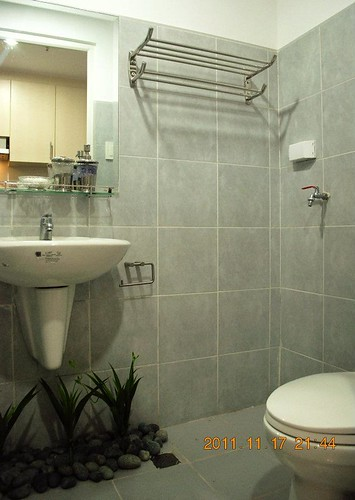 Toilet and Bathroom Area