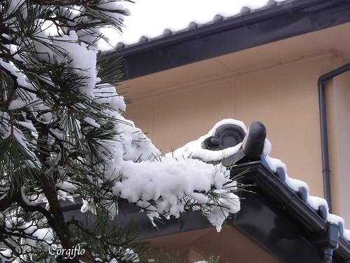 aBLOGjardin-120122-neige2