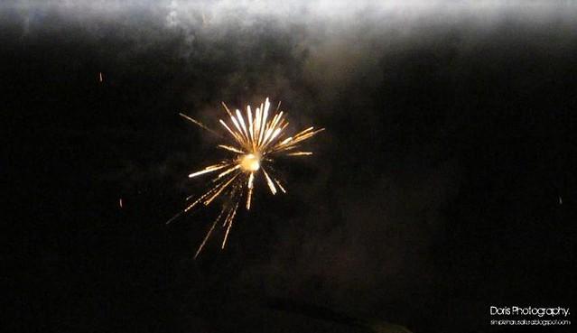 firework 20