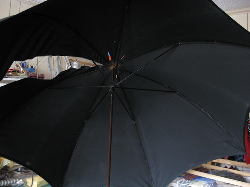 Silk Umbrella