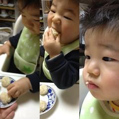おにぎり食べるとらちゃん(2012/2/2)