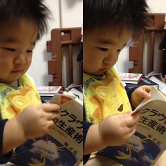 堀正岳「理系のためのクラウド知的生産術」を読むとらちゃん(2012/2/4)