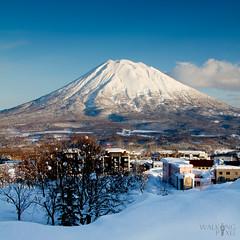 Mount Yōtei (5/52)