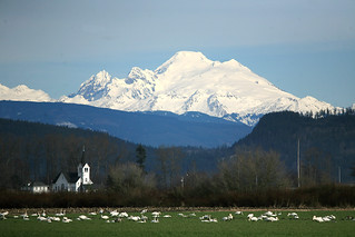 Skagit Valley and Mt. Baker