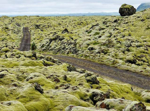 火山大噴火時の溶岩を覆い尽くすコケの大溶岩平原「エルドフロインの溶岩フィールド」