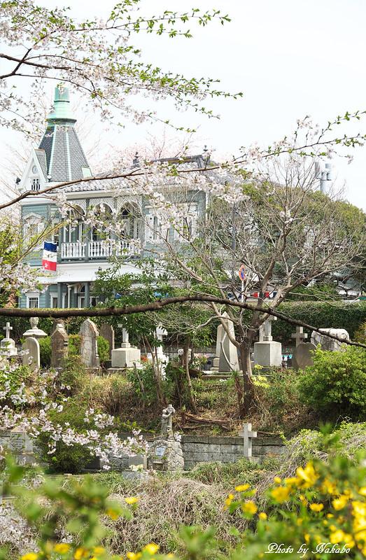 元町公園 -外国人墓地を望む- by Nakabo