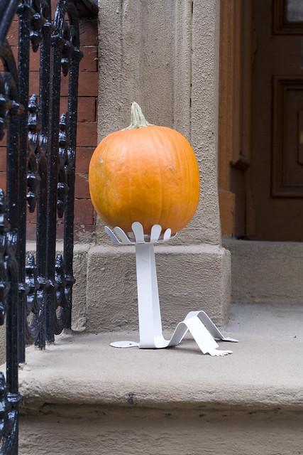 365.64 Greatest Pumpkin Stand Ever