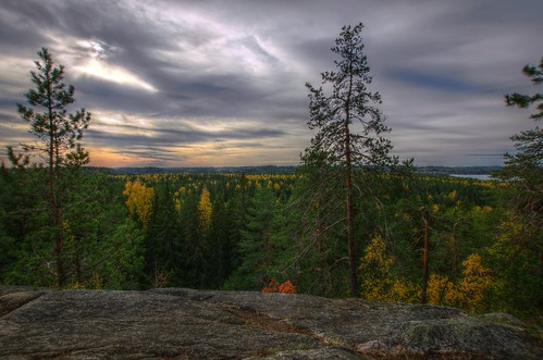 autumn trees rock forest finland fi hdr kuopio