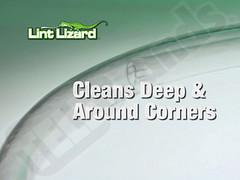 Lint Lizard 6