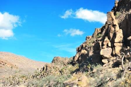 Mojave desert terrain