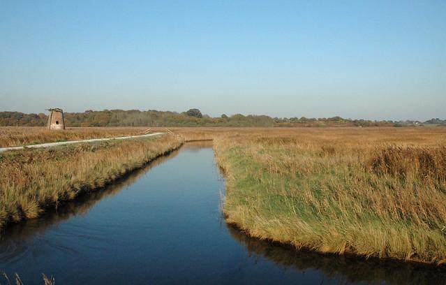 Walberswick Nature Reserve, Westwood Marshes