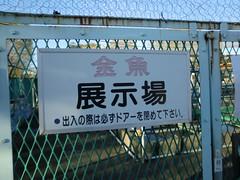水元公園20111205-052