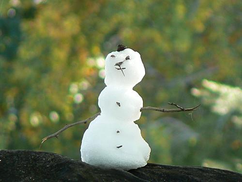 petit bonhomme de neige.jpg