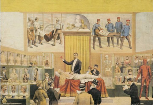 El Museo anatómico del señor Roca