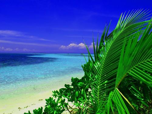無料写真素材, 自然風景, 海, ビーチ・海岸, 風景  フィリピン