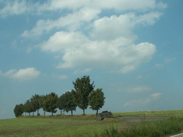 Erzgebirge - Baum - Wolken