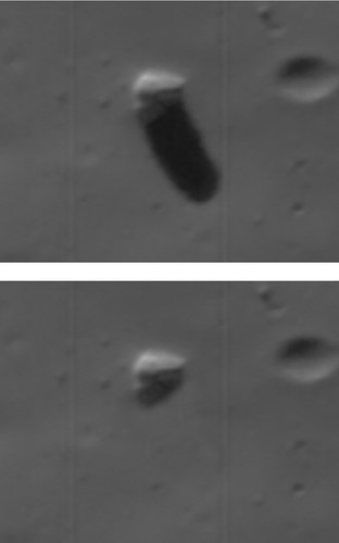 Monolite su Phobos - dettaglio