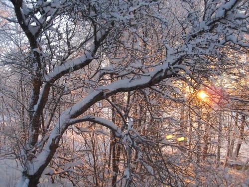 Milja Kaunisto, 17.12.2011