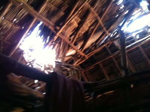 Sauma's Roof