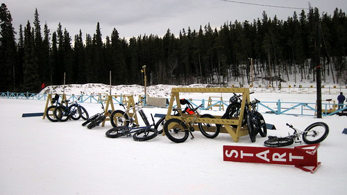Fat bikes at rest