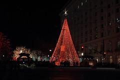 Temple Square - 2011