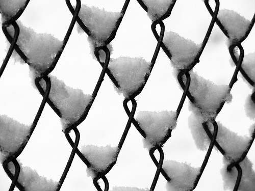 winter usa snow storm abstract fence woodland washington chainlink wa while canons3
