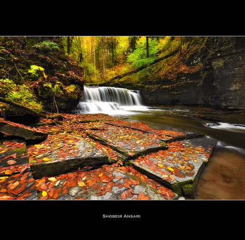 longexposure autumn panorama newyork leaves america creek season landscape waterfall october stream hiking wideangle fallfoliage trail changing covered fallen fingerlakes northeast goldenleaves autumninnewyork fillmoreglen autumnlandscape shobeiransari fingerlakesfall newyorkscenic
