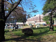 fes2011-成蹊大学-欅祭-02