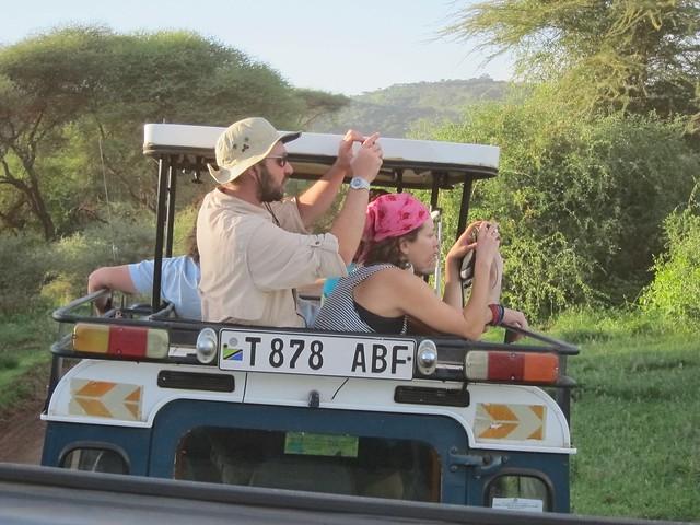 Safari-ing!