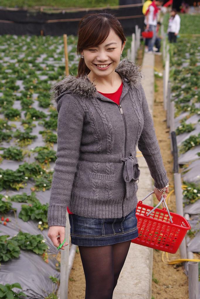 3月12月大湖採草莓