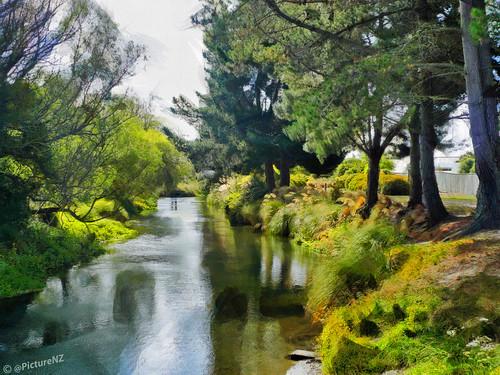 trees newzealand christchurch art grass river reeds painting canterbury nz fir southisland styx spencerville tyxriver