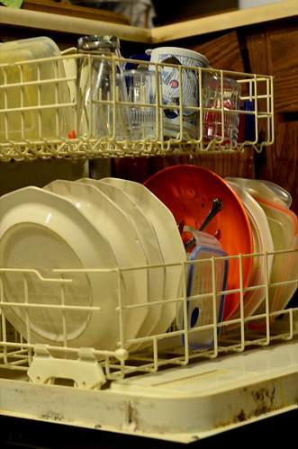 Only Wash Full Loads of Dishes or Clothes (22/365)